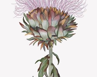 Botanical Thistle Print