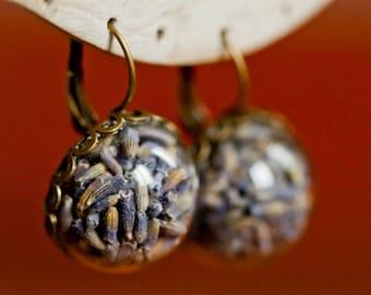 Earrings real dried flowers of lavander - Jewel boho vintage botanical hand hemisphere glass