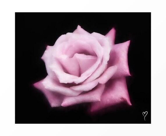 "Purple Modern Art, Original Fine Art Print of a Purple Rose, Wall Art, Home Decor, Fine Art Print, Gift, ""Impression of Petals"""
