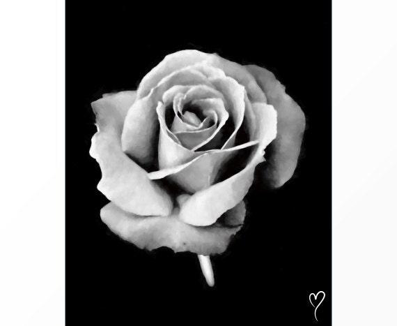 "Rose Art, Black and White Wall Art, Modern Home Decor, Black and White Print, Flower Wall Art, ""Timeless Love"""