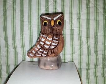 Miniature Peruvian Owl