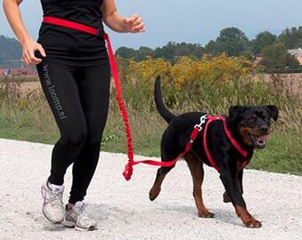 Dog elastic LOOMP running lead for recreation