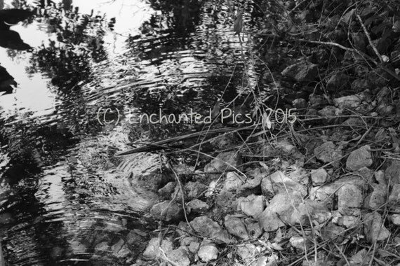 Lakeside Photography: The Rocky Shoreline- nature photography, lake, ripples, black and white