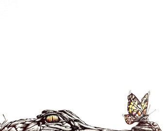 Alligator & Butterfly - Original 13x16 Inch Framed Drawing - FREE Shipping