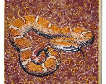 Arizona Ridge-Nosed Rattlesnake Panel