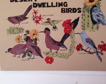 Desert Dwelling Birds