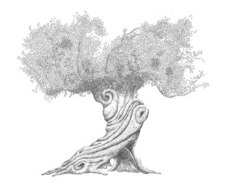 Olive Tree (4): Print of Original Pen & Ink Drawing