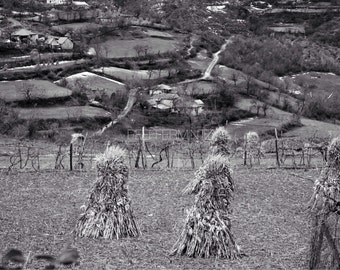 Black and White Photography / Hay Photography / Farm Photography / Haystacks / Digital Download