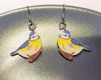 Earrings blue tit