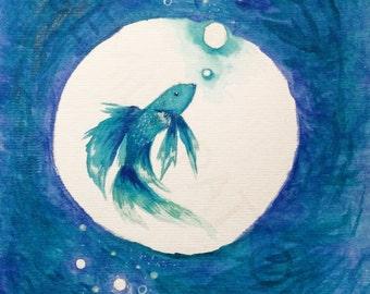 Betta Fish Bubble
