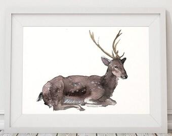 Animal art Nursery decor Watercolor deer print ACW11