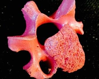 Hot Pink Glittered Vertebra