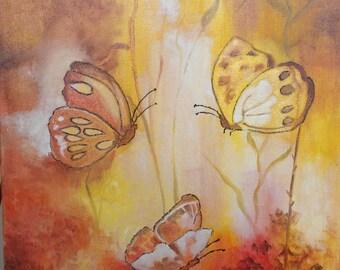 Butterflies in Sunshine