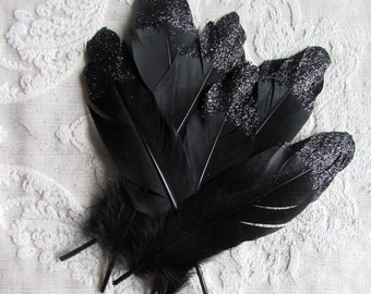 Black Feathers Dipped in Black Glitter