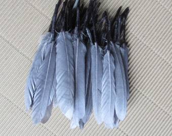 Grey Goose Feathers (Small)