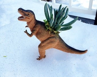 T-rex Planter-tall