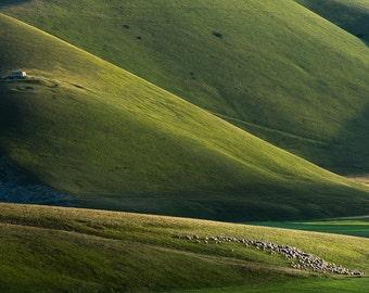 Italy Photography-Fine Art Photography-Italy-Art Print Decor-Wall Print-Wall Decor-Countryside-Landscape-Home Decor