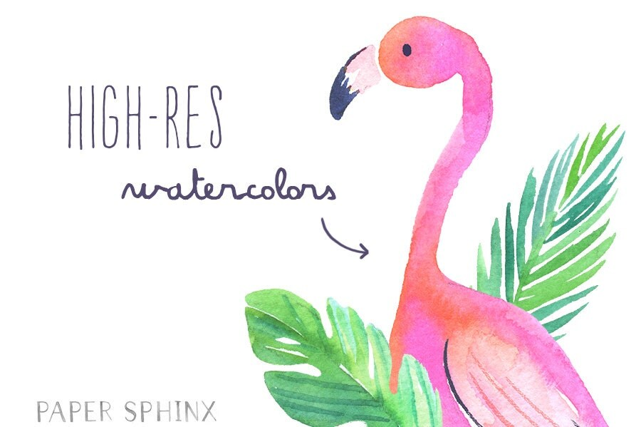 Watercolor Flamingos Clipart | Tropical Flamingos Summer ...