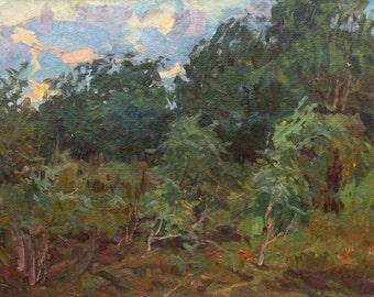 Sale 40%! VINTAGE IMPRESSIONIST ART Old Forest Landscape, Original Oil Painting by Soviet Ukrainian artist V.Gaiduk 1970s, Handmade Fine art