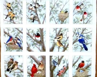 "Wild Birds Fabric Panel by Elizabeth Studios - 100% Cotton  23"" x 23"""