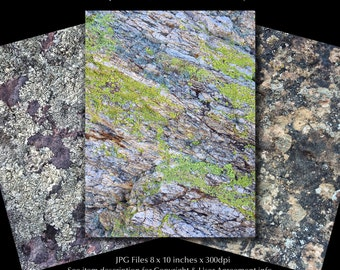 Lichens on Rocks Stock Photos | Nature Clip Art Photos | Textured Rocks Background Images | Small Business - Commercial Use | Rock04