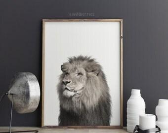 Lion photo print - Lion print - Black and white photography -  Printable wall art - Lion art - Modern minimal photo print