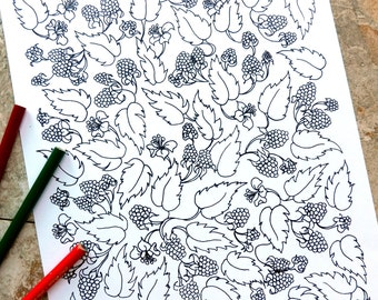 Berries, vines, coloring pages, lacy, leaves, leaf, fruit, miracle fruit, wildberry, the berry