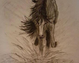 Print of original drawing, Running horse