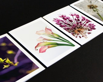 Floral Greeting Card Set of 8