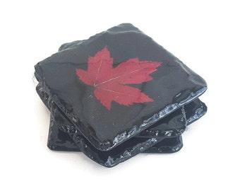 Slate Maple Leaf Coasters (set of 4) Real Maple Leafs with a felt back.