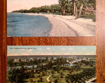 Vintage Color Florida Postcards 1913-17