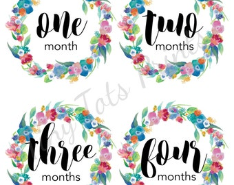 New!! Baby Girl Monthly Stickers, Milestone Stickers, Girl Baby Stickers, 12 Month Stickers, Baby Stickers, Floral Frame