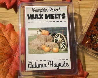 Autumn Hayride Wax Melts - Soy Blend