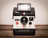 Photo Print - Retro Polaroid Rainbow Camera & Q-Light on Wood Trunk, 8x10 or 16x20