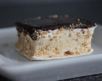 Marshmallow with Chocolate and Graham Crumbs, Mallomar-Type, Homemade Candy, Gourmet, Edible