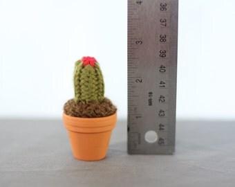 Tiny Hand Knit Cactus in a Tiny Terracotta Pot 005