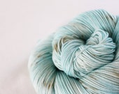 Robin's Egg - Nuthatch - 75/25 superwash merino/ nylon sock yarn