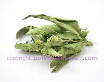 STEVIA, whole leaf, STEVIA, leaf, whole