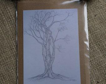 Beech Tree study blank gift card, A5