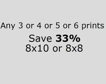 DISCOUNT SET Save 33% On 3 or 4 or 5 or 6 8x10 or 8x8 Prints of Your Choice