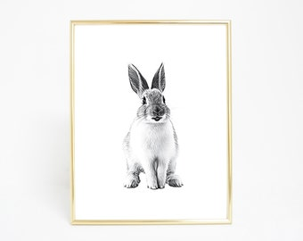 Rabbit - Digital Print and Poster - Drawing & Illustration - Wall Art - Printable Artwork - All Popular Sizes