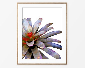 Bromeliad Print, Botanical Print, Tropical Art, Wall Decor, Contemporary Art, Bromeliad Poster, Bromeliad Photography, Purple Red, #105a