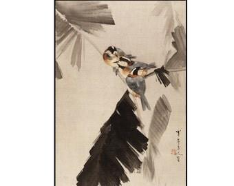 Birds Japanese Print - Birds on Branch - Birds Ink Drawing - Ink Brush - Japanese Art - Kacho-e - Watanabe Seitei - Digital Download