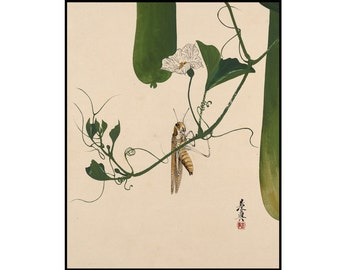 Grasshopper Vintage Print - Green Botanical Print - Japanese Vintage Print - Japanese Art - Shibata Zenshin - Digital Download - Oriental