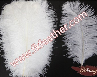 "20""- 22"" Ostrich Feather"