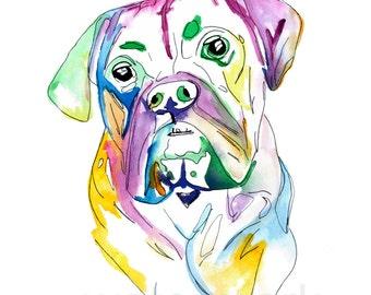 English Bulldog- Print