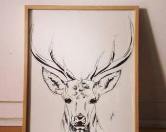 The neighbour. Deer. Original ink.