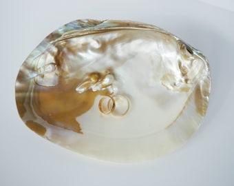 Seashell Ring Holder, Natural Shell Ring Bearer, Beach Ring Pillow, Shell Ring Bearer, Beach Wedding, Natural Seashell, Ring Bearer