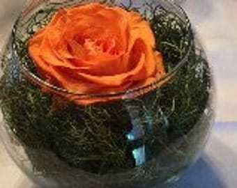 Orange Preserved Rose arrangement