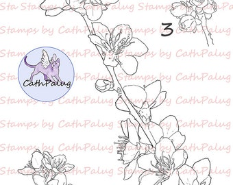 Digital Stamp-Peach Flowers-Art for Cards & Crafts